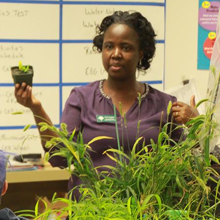 Students Participate in Mutant Millets Research